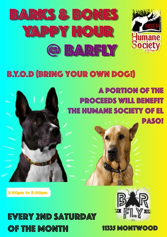 Barks and Bones Yappy Hour | Humane Society of El Paso