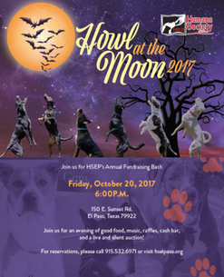 Howl at the moon speed dating